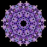 Modelo, ornamento en los tonos violetas Fotos de archivo libres de regalías