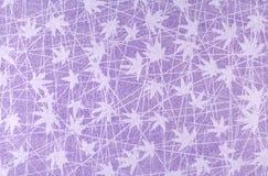 Modelo púrpura Imagen de archivo