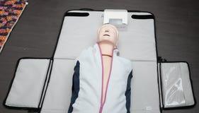 Modelo para practicar la respiración artificial foto de archivo