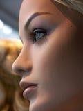Modelo perfeito Fotos de Stock