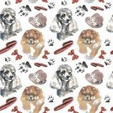 Modelo - perro del compañero stock de ilustración