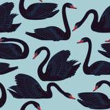 Modelo pintado a mano inconsútil de los cisnes negros ilustración del vector