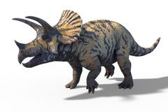 Modelo pré-histórico do dinossauro do Triceratops ilustração do vetor