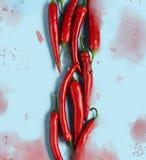 Modelo puesto plano de las pimientas de chile rojo imagenes de archivo