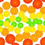 Modelo rayado de la fruta cítrica Fotografía de archivo libre de regalías