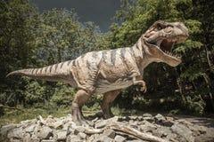 Modelo realístico do tiranossauro Rex do dinossauro imagens de stock
