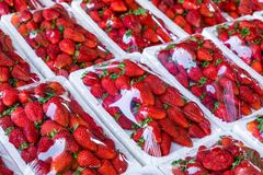 Modelo rojo de las fresas en mercado textura fresca de las fresas Fruta sana imágenes de archivo libres de regalías