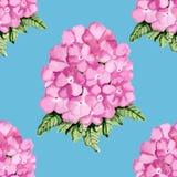 Modelo rosado floral Fotos de archivo libres de regalías