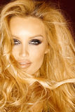Modelo rubio del pelo largo hermoso Fotos de archivo