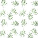 Modelo seamlless tropical con las hojas de palma exóticas Hojas tropicales del modelo de Seamlless en el fondo blanco libre illustration