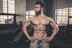 Modelo 'sexy' caucasiano da aptidão no fim do gym acima do Abs imagem de stock