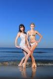 Modelo 'sexy' do biquini Imagens de Stock