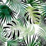 Modelo tropical colorido inconsútil con efecto de la acuarela Modelo elegante para las materias textiles stock de ilustración