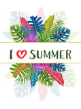 Modelo tropical con las hojas, ejemplo del verano del vector Foto de archivo libre de regalías