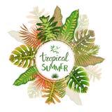 Modelo tropical con las hojas, ejemplo del verano del vector Fotografía de archivo libre de regalías