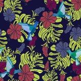 Modelo tropical con los colibríes, las hojas de palma y las flores del hibisco stock de ilustración