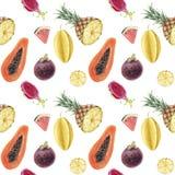 Modelo tropical de la acuarela hermosa exhausta incons?til de la mano con las frutas jugosas libre illustration