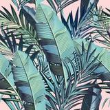 Modelo tropical de las hojas de palma del vector hermoso en estilo elegante ilustración del vector