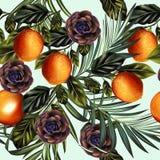 Modelo tropical de las hojas de palma del vector de la moda con la fruta cítrica stock de ilustración