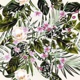Modelo tropical de las hojas de palma y de las rosas del vector de la moda stock de ilustración