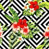 Modelo tropical del hibisco y de las hojas de palma Foto de archivo libre de regalías