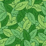 Modelo tropical fresco, fondo floral del vector inconsútil de las hojas de palma libre illustration