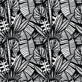 Modelo tropical inconsútil con las hojas Imagenes de archivo