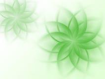 Modelo verde abstracto de la flora Fotografía de archivo libre de regalías