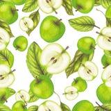 Modelo verde de la manzana Foto de archivo
