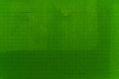 Modelo verde de la pared de ladrillo Fotografía de archivo libre de regalías