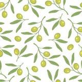Modelo verde oliva inconsútil Olive Branch Un modelo simple Vector Imagen de archivo libre de regalías