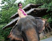 Modelo y elefante. imagen de archivo