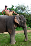 Modelo y elefante. imagen de archivo libre de regalías