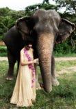 Modelo y elefante. imagenes de archivo