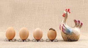 Modelo y huevos del pollo Imagen de archivo libre de regalías