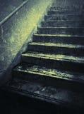 Modelo y sombra en lanzamiento de la escalera en azul Fotos de archivo libres de regalías