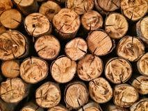 Modelo y textura de la madera Fotos de archivo
