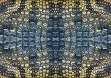 Modelo y textura del cocodrilo Imagen de archivo