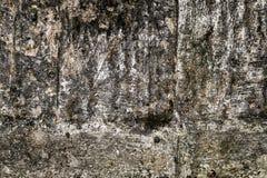 Modelo y texturas del Grunge en fondo concreto envejecido Fotos de archivo libres de regalías