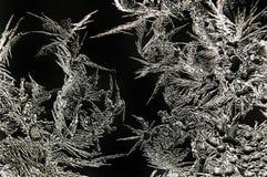 Modelos abstractos de la helada Foto de archivo libre de regalías