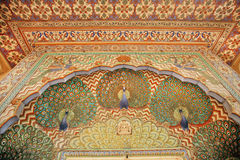 Modelos con los pavos reales en las paredes pintadas hermosas, la India Fotos de archivo libres de regalías