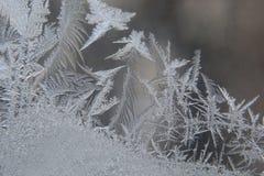 Modelos de Frost sobre el vidrio del invierno Fotos de archivo