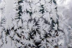 Modelos de la helada natural y de los copos de nieve Fotos de archivo libres de regalías