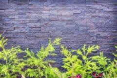 Modelos de la naturaleza de la pared de piedra de la pizarra gris decorativa detallada del grunge para el fondo horizontal de la  imagenes de archivo
