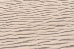 Modelos de la ondulación Foto de archivo libre de regalías