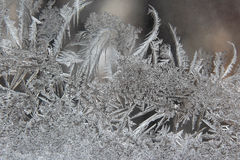 Modelos del hielo del invierno en ventana Imagenes de archivo