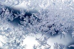 Modelos del invierno de Frost Foto de archivo libre de regalías