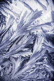 Modelos del invierno en la ventana Imagenes de archivo