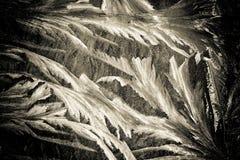 Modelos del invierno en la ventana Imagen de archivo