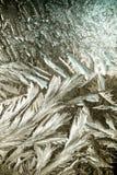 Modelos del invierno en la ventana Imágenes de archivo libres de regalías